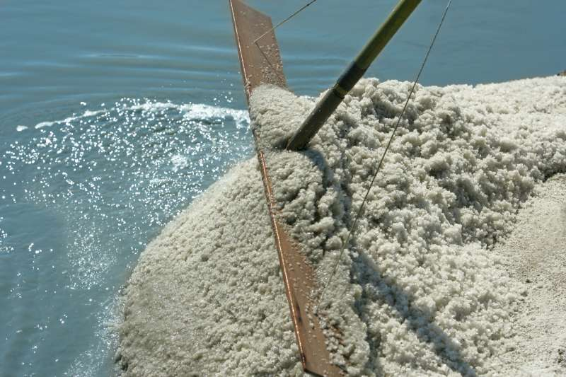 Le gros sel gris bio produit par le paludier Gilles Hervy dans les marais salants de Guérande