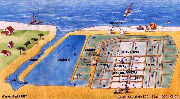 Le circuit de l'eau dans les marais salants de Guérande